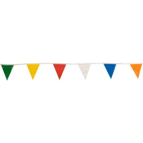105' Pennant - Multi-Colored | HICO